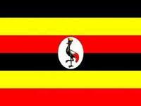 """Seminario """"Uganda: opportunità di collaborazione economica per le imprese italiane"""""""