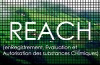 Seminario su Reach, CLP, SDS: normativa sulle sostanze chimiche e pericolose