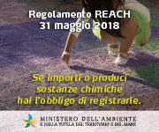 REACH e CLP -  aspetti applicativi ed adempimenti per le PMI