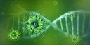 Emergenza Coronavirus - Informazioni per le imprese