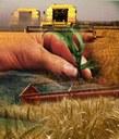 Rapporto sull'agricoltura parmense. Presentazione dei dati per l'anno 2011.