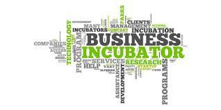 incubatore2